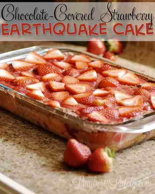 This Chocolate-Covered Strawberry Earthquake Cake recipe looks incredible! The combination of fresh strawberries and rich chocolate frosting looks so amazing.