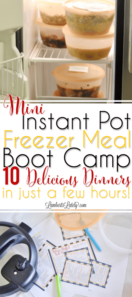 Instant Pot Freezer Meals    Mini Freezer Meal Boot Camp    Printable Labels    Electric Pressure Cooker    Easy Recipes    Simple Dinners    Food    Ground Beef    Chicken    Pressure Cooking
