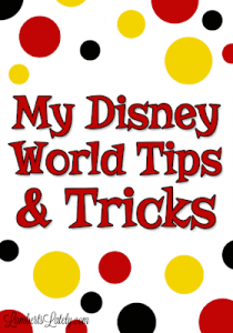 Disney World and Magic Kingdom in One Day || Products to Bring || Tips and Tricks || Vacation Planner || Recommend Parks