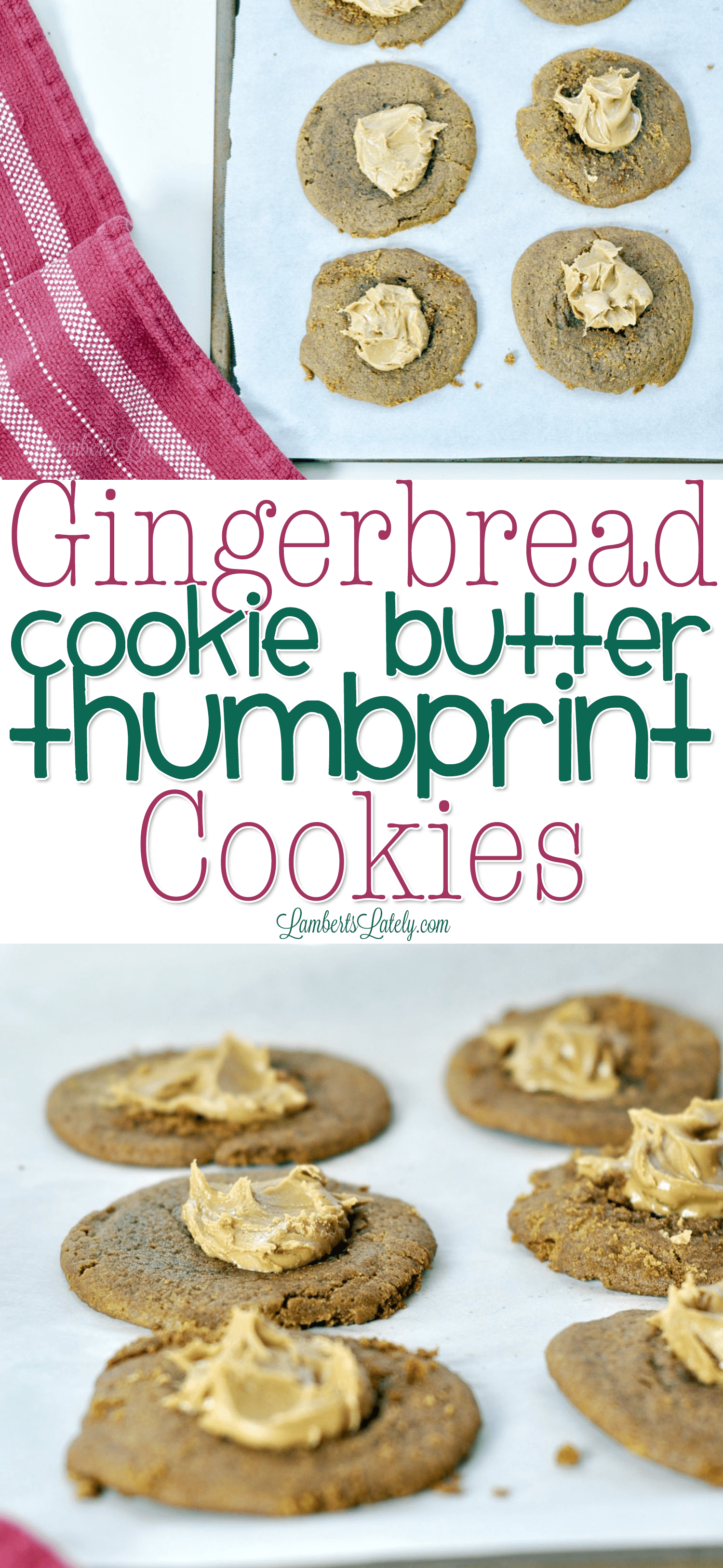 Such an easy recipe for gingerbread cookies - they are so soft and chewy! This is a great recipe for homemade Christmas/holiday cookies with kids. A thumbprint of cookie butter makes them even richer and more delicious.