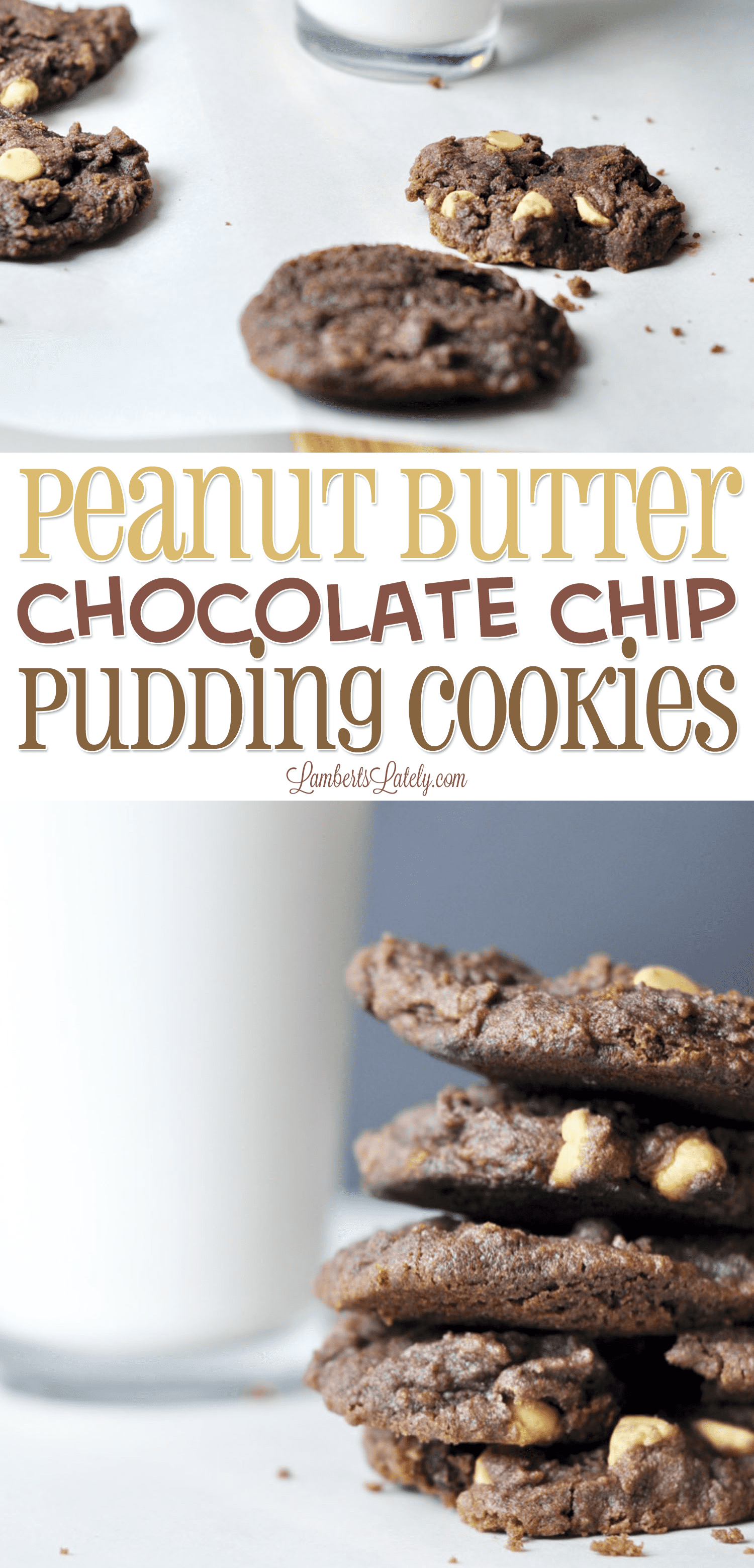 Peanut Butter Chocolate Chip Pudding Cookies are so fun to make with kids - this is an easy Christmas treat that uses instant pudding to make the chewiest, softest cookies ever!