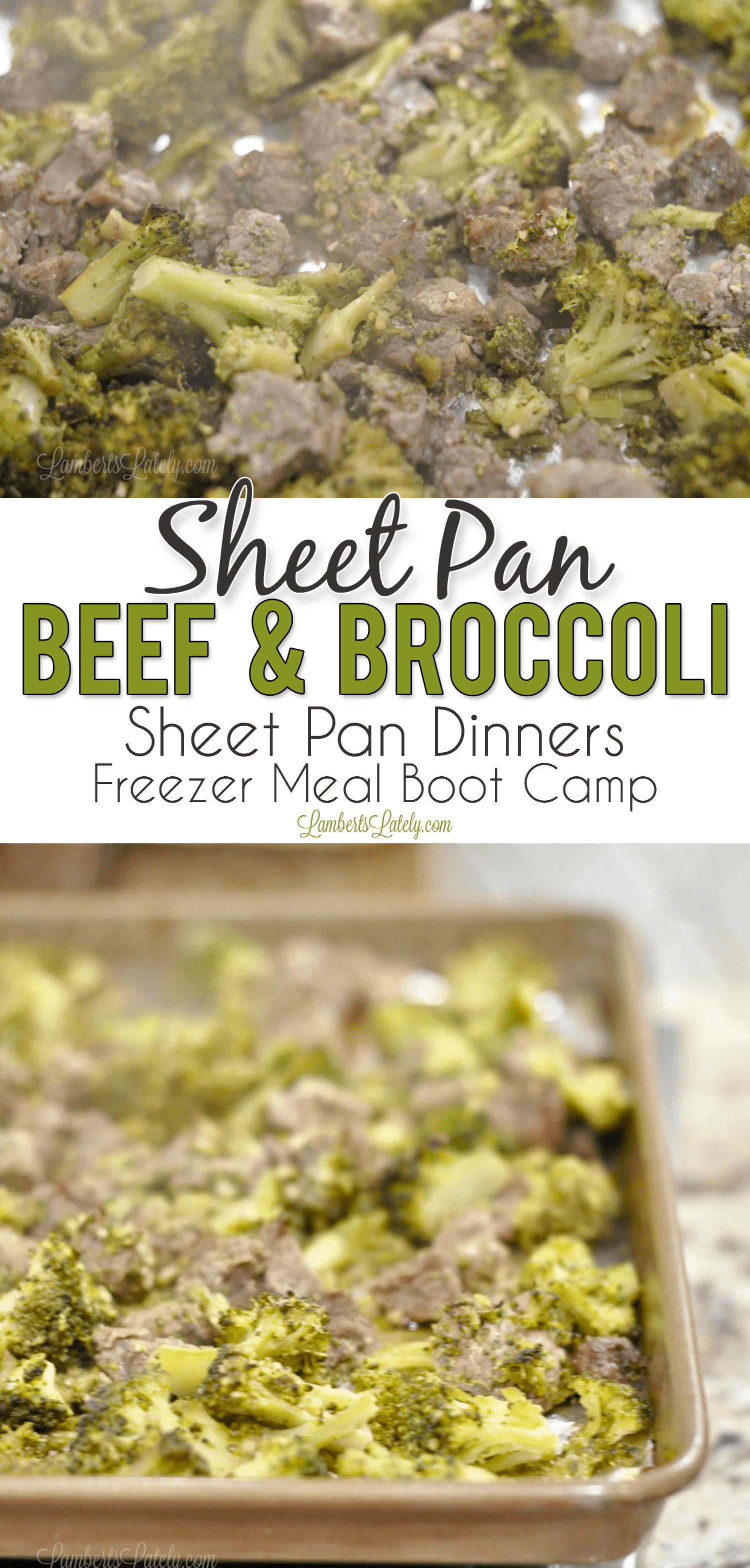 This sheet pan beef and broccoli combines pieces of steak and savory broccoli florets for a perfect flavor combination - goes perfectly over white rice! It's also a wonderful keto/low carb solution. Sheet pan dinners are such easy meals - they make for easy weeknight freezer meals too.