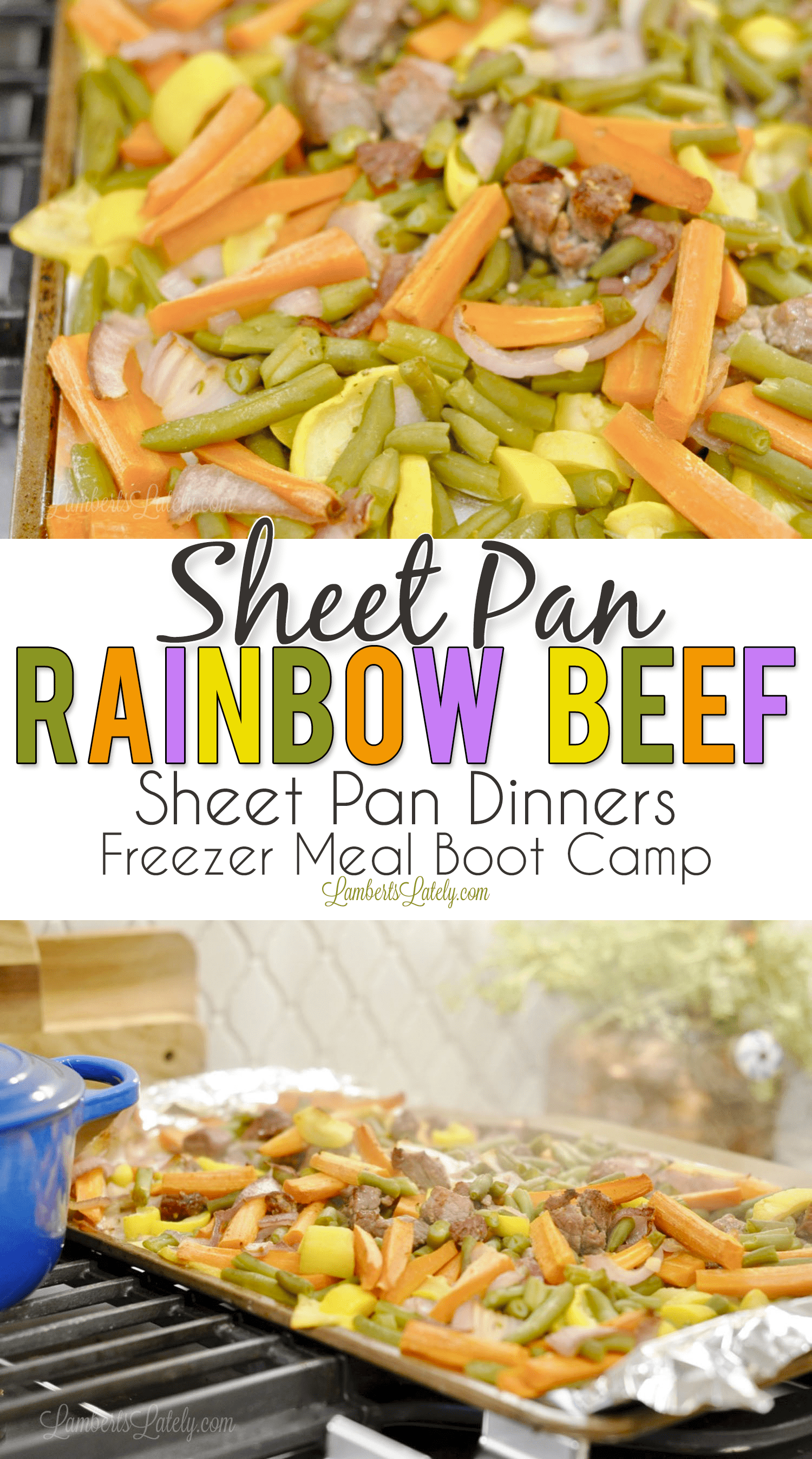Sheet PanRainbow Beef combines savory pieces of steak with carrots, green beans, squash, and red onions to make a beautiful and colorful dinner! Gives a great serving of vegetables and has a rich ranch flavor. Sheet pan dinners are such easy meals - they make for easy weeknight freezer meals too!