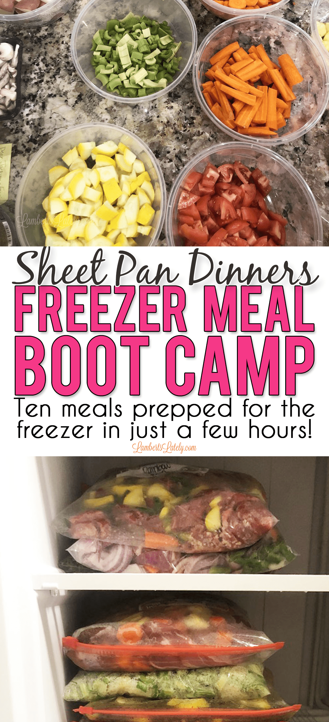 Sheet Pan Dinners Freezer Meal Boot Camp has 10 delicious sheet pan recipes combined into one meal prep session. Includes recipes for chicken, steak, pork, and more - there are even free bag labels and recipe card printables!