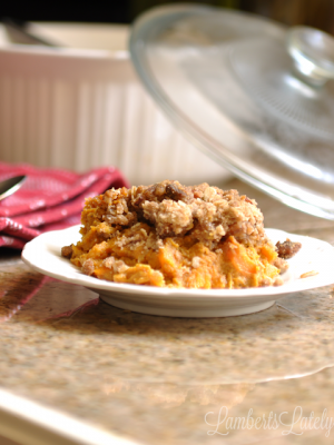 This recipe for Pumpkin Spice Sweet Potato Casserole looks delicious! Lots of rich flavors and spices.